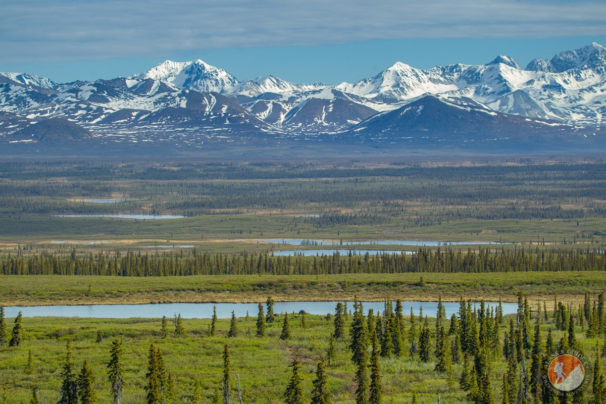 Looking out at the Alaska Range over Monaha Flat from the Denali Highway.