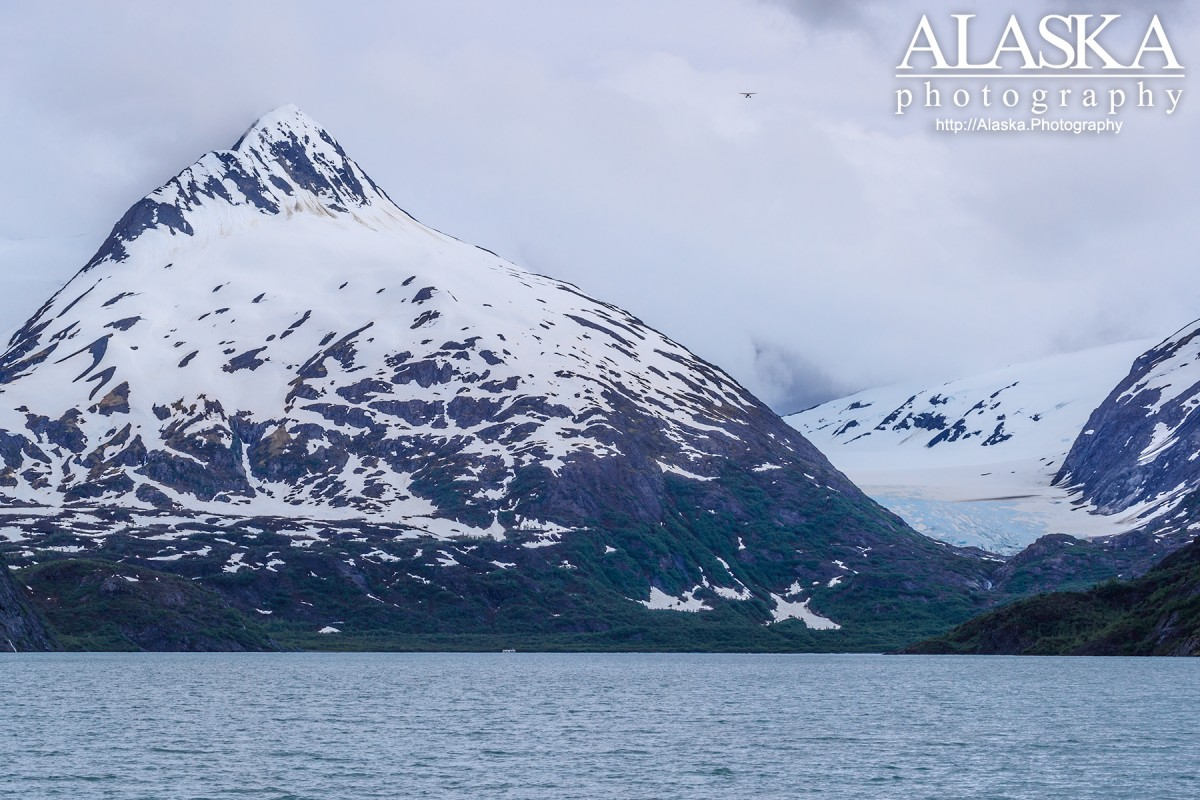 Looking out at Baird Peak and Burns Glacier on an overcast summer day at Portage Lake.