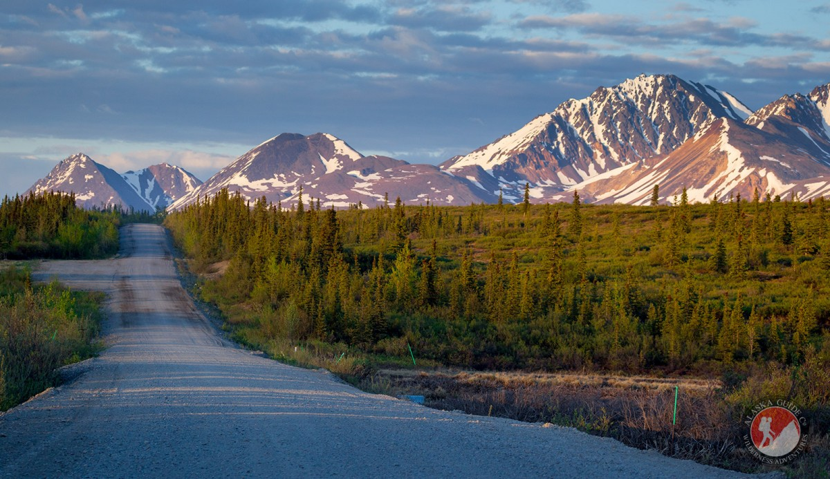 Starting out down the Denali Highway from Cantwell.