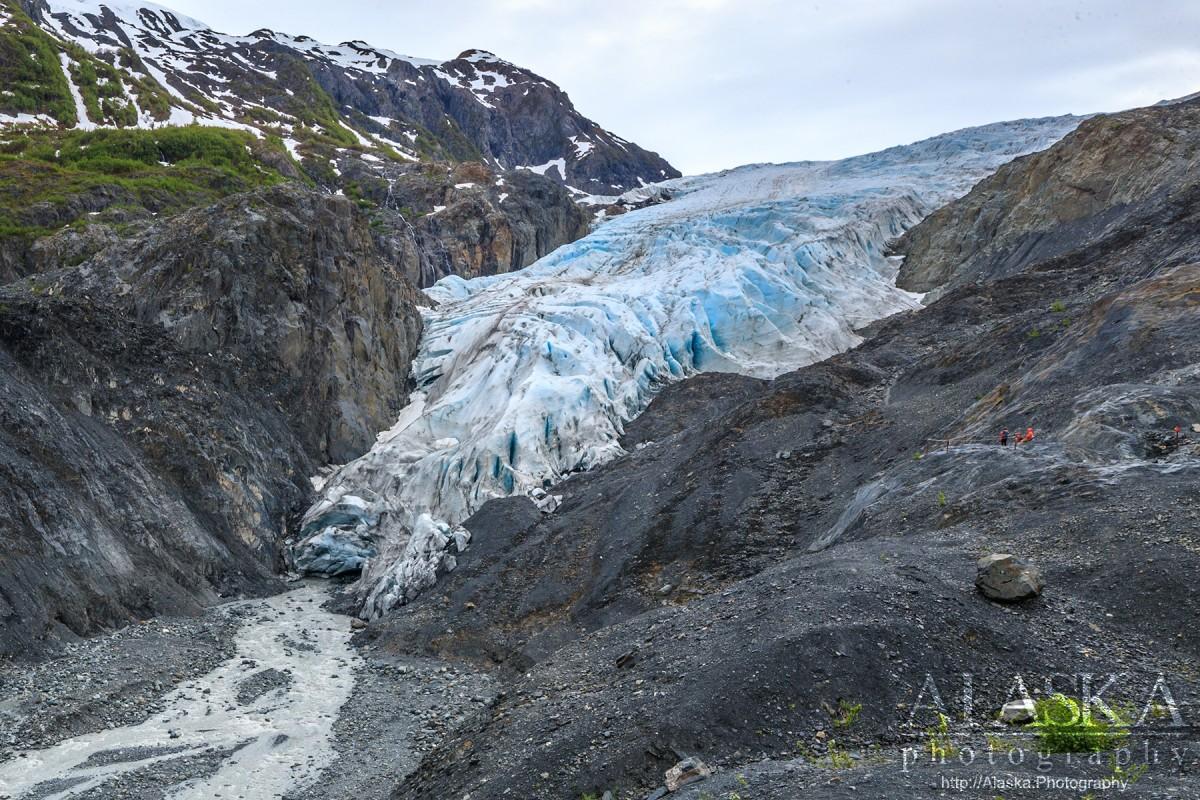 exit glacier alaska alaska guide