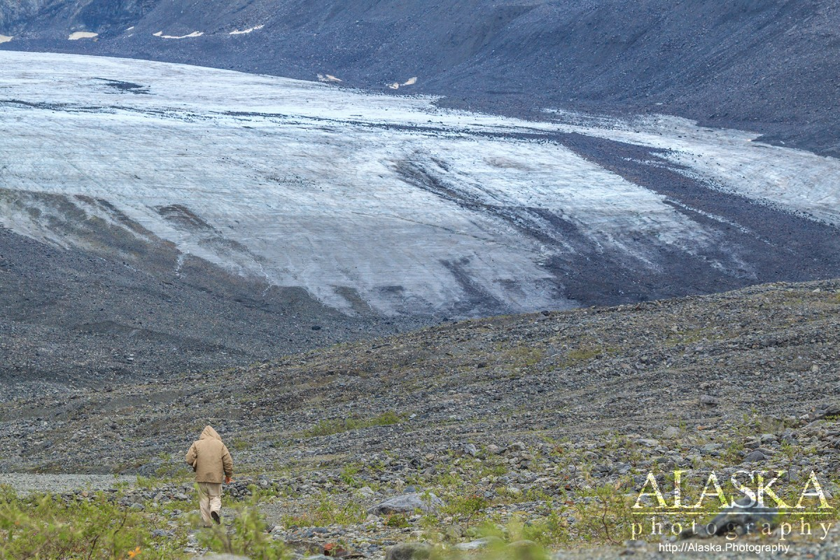 A man hikes towards Gulkana Glacier.