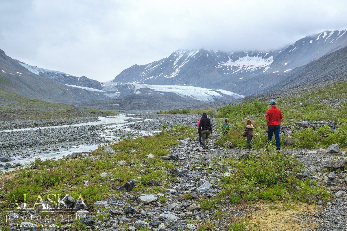 Hiking up the trail along the Gulkana River to Gulkana Glacier.