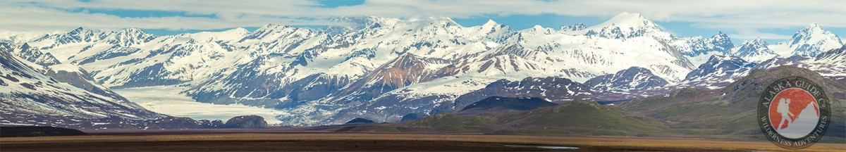Looking at the Maclaren Glacier from the Denali Highway.