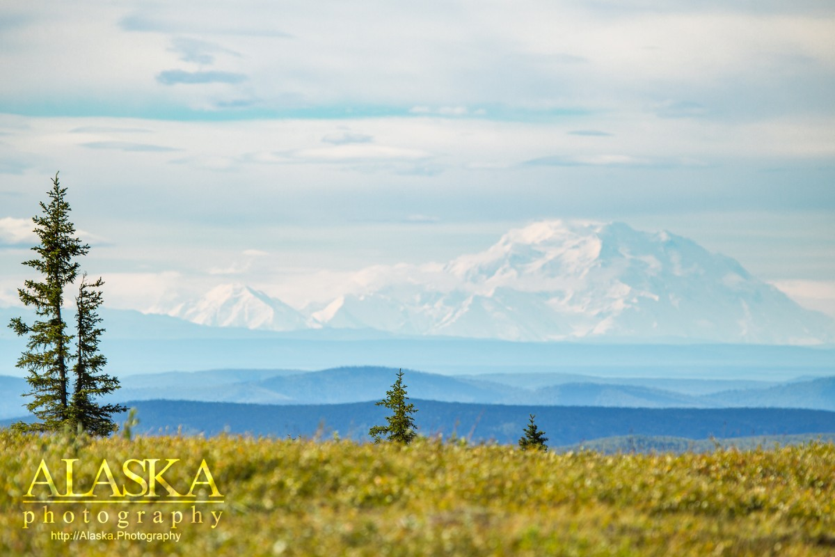 On a clear day you can see Denali from Murphy Dome, outside Fairbanks.