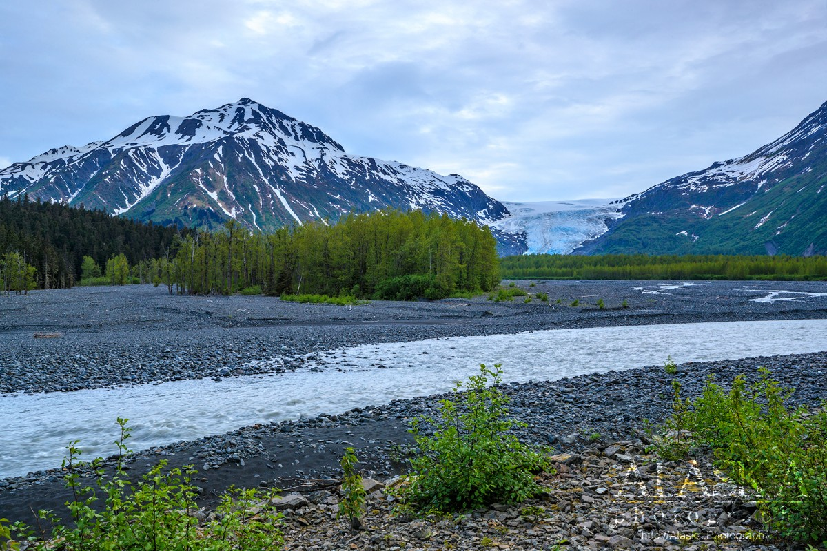 Looking out at Exit Glacier from Resurrection River.