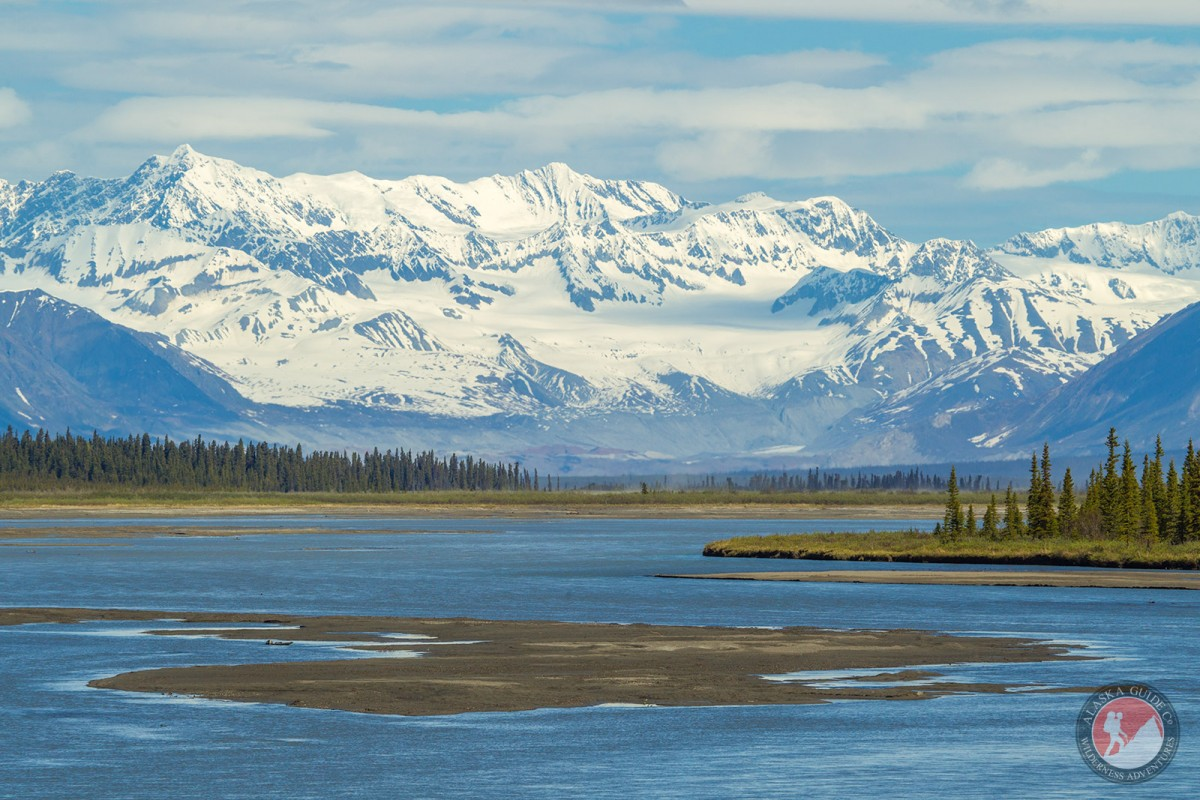 Looking up the Susitna River from the Denali Highway bridge.