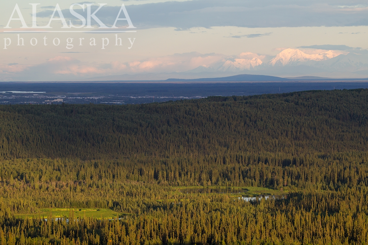 Looking across Goldstream Valley, Fairbanks, and on to Mount Hayes and the Alaska Range.