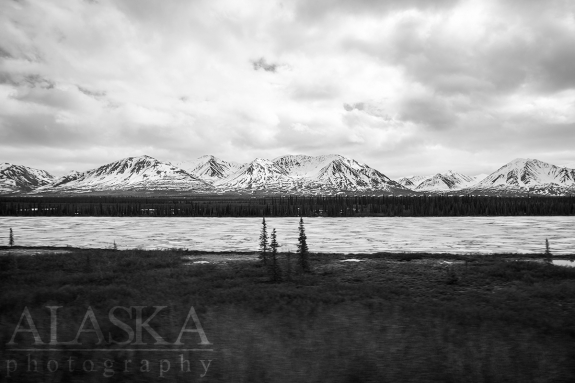 Rolling by Summit Lake on the Alaska Railroad.