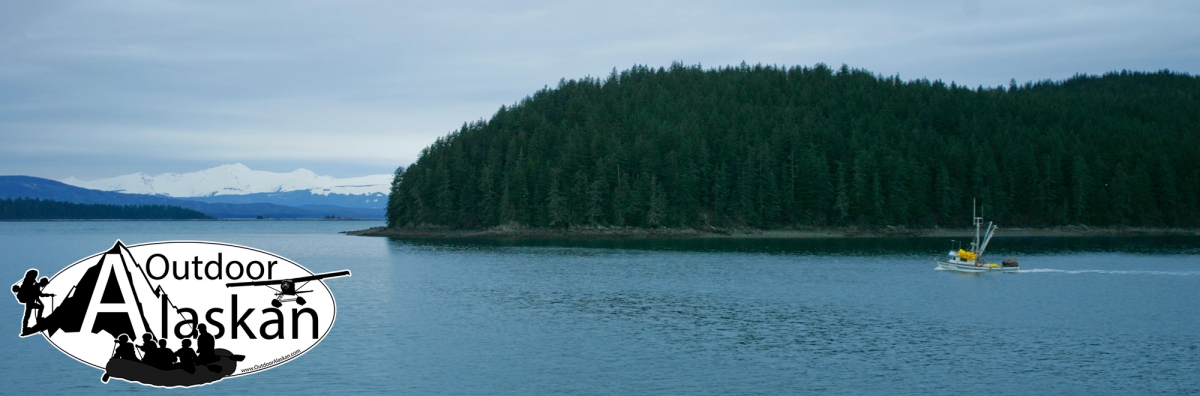 On the morning ferry up Lynn Canal, sweeping past Coghlan Island. Taken Feb 09, 2007.