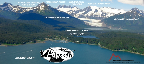 Looking up at Mendenhall Glacier and the surrounding mountains from above Auke Bay.