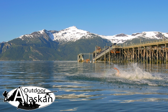 Port Chilkoot is a popular place around Haines to go swimming to escape the heat, even while snow remains on Mount Villard. Taken June 2, 2009.