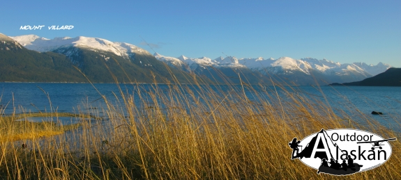 Afternoon sun on the grass along the shores of Port Chilkoot. Looking across Lynn Canal at Mount Villard.