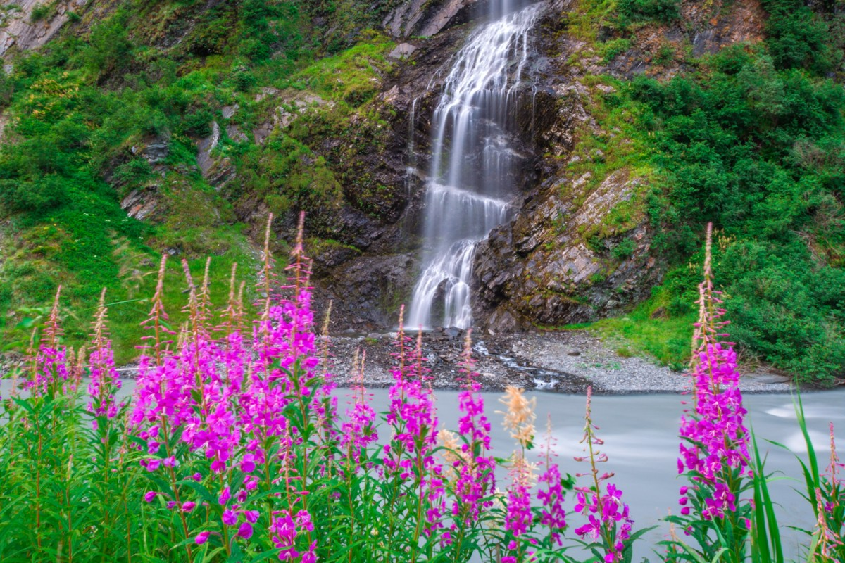 Valdez Sea to Sky Cruise Excursion