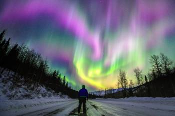 A man stands in amazement watching the northern lights dance above the Richardson Highway near Valdez.