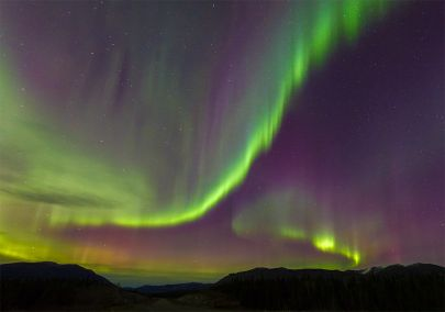 The northern lights dance through the sky while traveling through the Yukon on our aurora borealis tour.